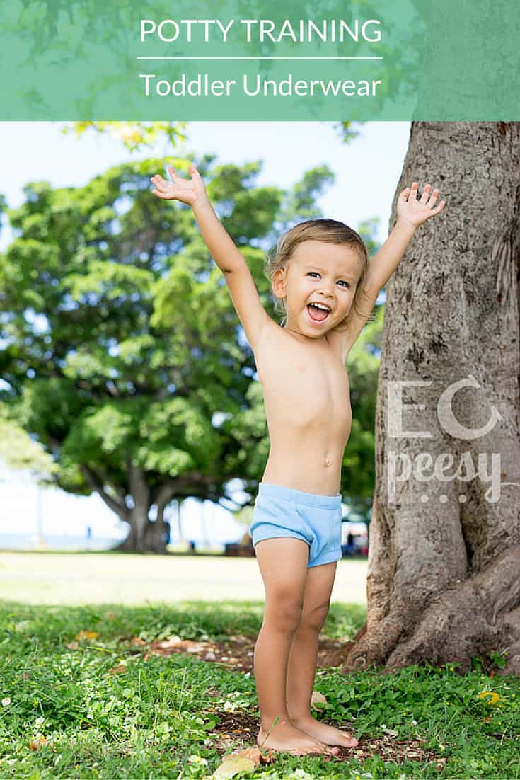 Toddler Underwear for Potty Training and EC Graduates