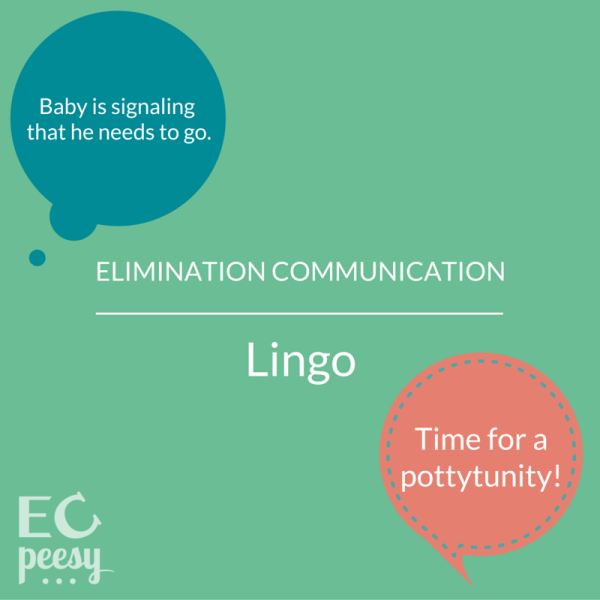 Elimination Communication Vocabulary Explained